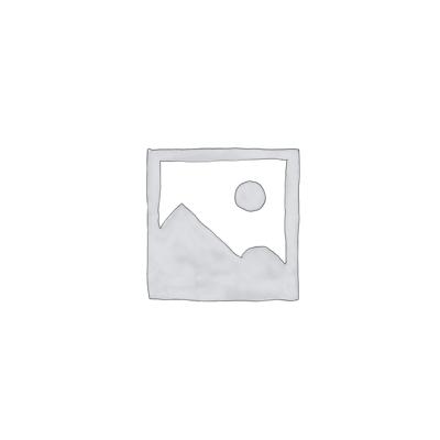 iPod Touch 4 Reparatur